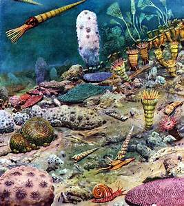 Zdeněk Burian: Silurian Sea Life  Silurian