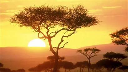 African Africa Around Background Relax Instrumental Hour
