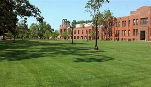 13 Colleges That Aren't Worth the Money - AOL Finance