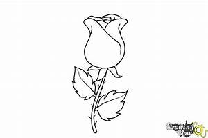 How to Draw a Rose Easy - DrawingNow