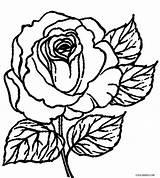 Coloring Rose Pages Printable Cross Cool2bkids Flower Roses Skull Sheets Bush Adult Getcolorings Tattoo Getdrawings Drawing sketch template
