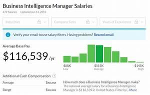 Business Intelligence  Bi   The Definitive Guide
