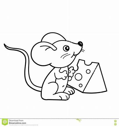 Mouse Coloring Cheese Cartoon Outline Pages Chuck