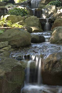 Aquascape Ecosystem by Tips For A Healthy Summertime Pond Aquascape Inc