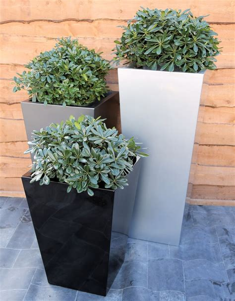 Square Outdoor Planters by Tapered Square Planters Black White Silver