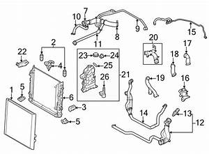 2010 Land Rover Range Rover Radiator Coolant Hose  Lower