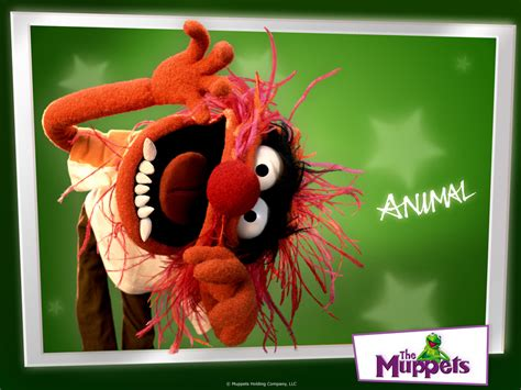 animal  muppets wallpaper  fanpop