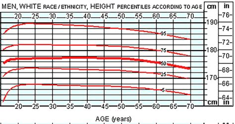 Average Height For Men, Height And Weight Chart