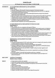 fantastic resume sample professional development motif With developing a professional resume