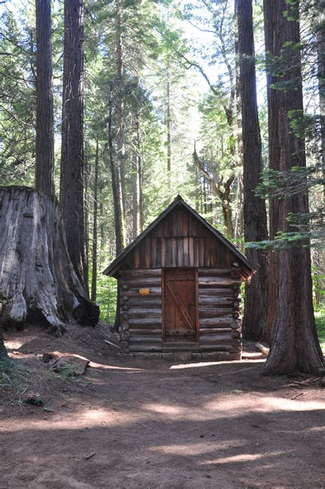 redwood forest cabins forest cabins redwood national forest cabins
