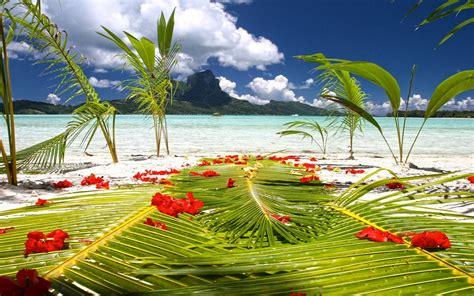 Bora Bora Hd Wallpaper Bora Bora Tahiti Wedding Ceremony Preparations On Beach By Blue Lagoon Polynesia Desktop