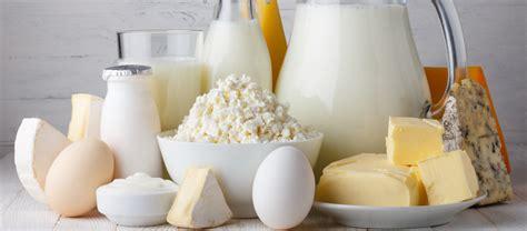 tabella kcal alimenti calorie alimenti le tabelle ad i valori nutrizionali