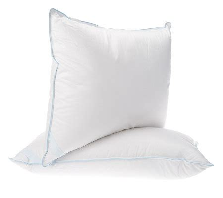 northern nights pillows northern nights set of 2 king 550fp all pillows