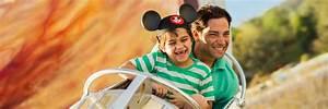 Opciones de boletos y pases a los parques temáticos de Walt Disney World Miami Vuelos Baratos