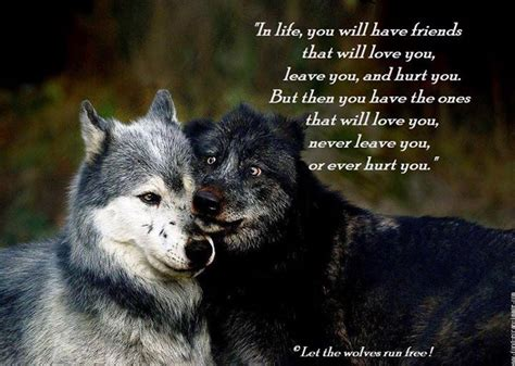 images  wolves quotes  pinterest wolves