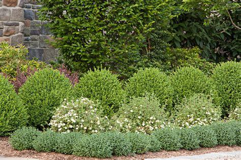 formal gardens cording landscape design  jersey