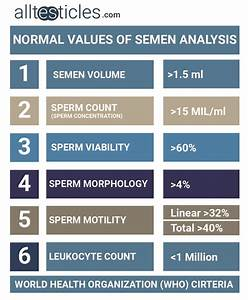 Semen Analysis Preparation  Full Guide