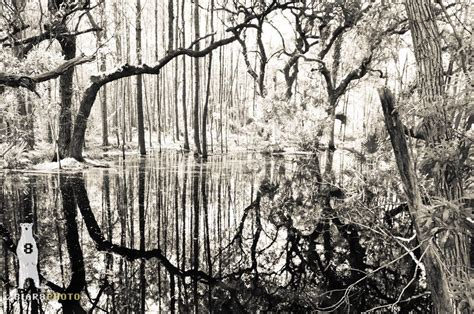 Abstract Black And White Photography Nature by Abstract Wall Abstract Landscape Abstract