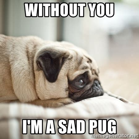 Sad Pug Meme - without you i m a sad pug miss you pug meme generator
