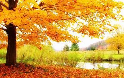 Scenery Autumn Wallpapers