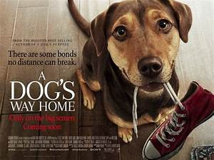 A Dog39s Way Home Movie Poster 2 Of 2 IMP Awards
