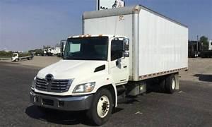 2010 Hino 145  165  185  238  258lp  268  338 Series Truck