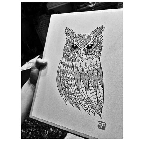 Cool Owl Designs Drawings
