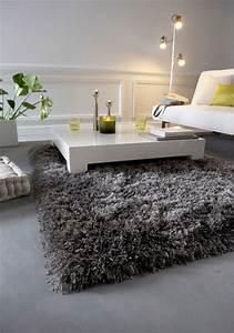 tapis de salon discount tapis shaggy gris argent sublime With tapis shaggy avec canape exposition a vendre