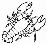 Lobster Coloring Pages Crustaceans Children Drawing Marine Claw Sheets Realistic Cartoon Clipartmag sketch template