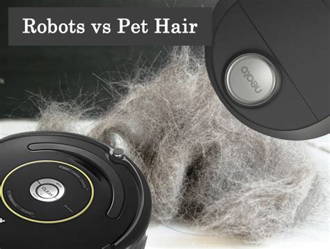 Roomba Wood Floors Hair by 100 Roomba Wood Floors Hair Neato Vs Roomba