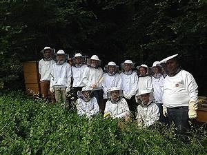 Was Vertreibt Bienen : bienen auf dem stundenplan radio steiermark ~ Eleganceandgraceweddings.com Haus und Dekorationen