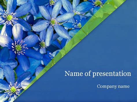 awesome powerpoint templates spring