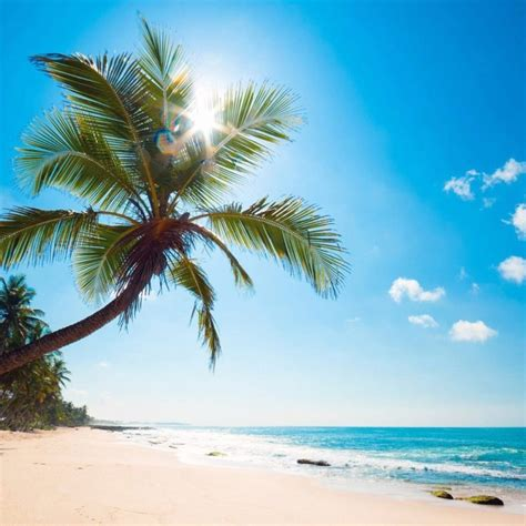 10 Best Tropical Beach Desktop Backgrounds Full Hd 1920