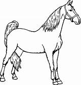 Horse Coloring Pages Horseman Miniature Spirit Headless Printable Sheets Colouring Getcolorings Getdrawings Drawing Clipartmag Clipart sketch template