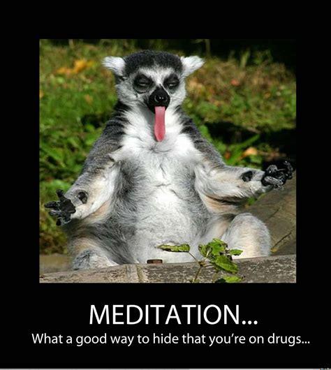 Best Meditation Memes Ever -- Made Me LMAO!