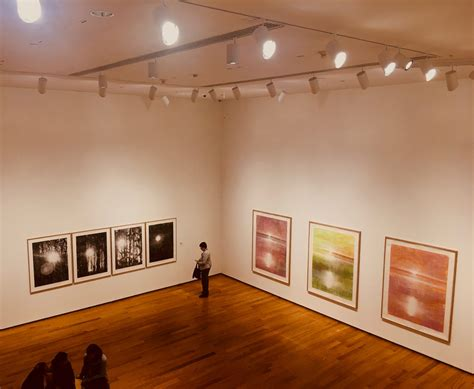 Wellesley College Davis Museum Holds Swanky Fall Opening