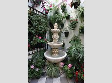 35 Patio Potted Plant and Flower Ideas Creative and