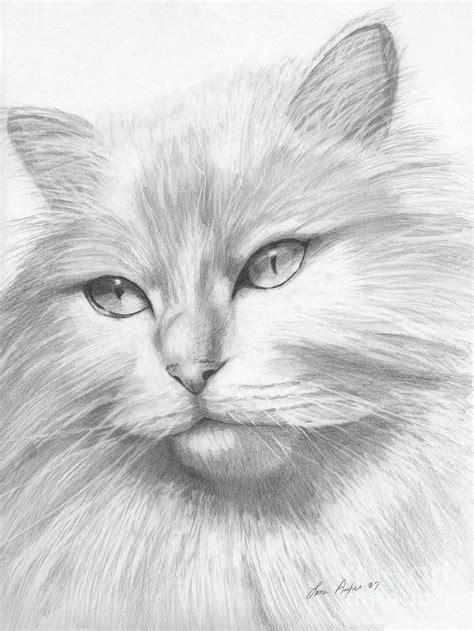 Best Cute Animal Drawings Ideas And Images On Bing Find What You