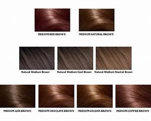 Loreal Color ChartDifferent Blondebrownreddark Hair Color
