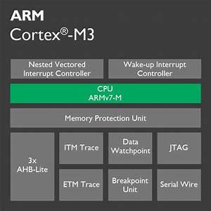 Cortex-m3 Processor