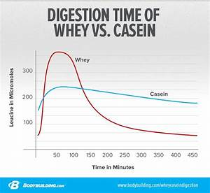 What U0026 39 S The Difference Between Whey And Casein Protein