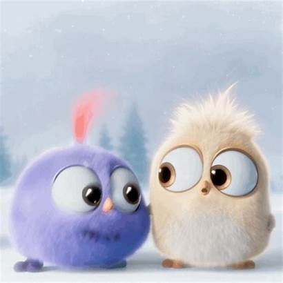 Angry Birds Hatchlings Adorable Giphy Gifs