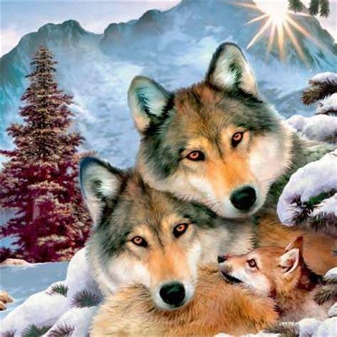 wolfe gifs bilder wolfe bilder wolfe animationen