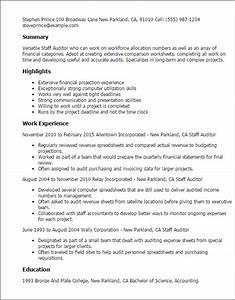 staff auditor resume template best design tips With auditor resume