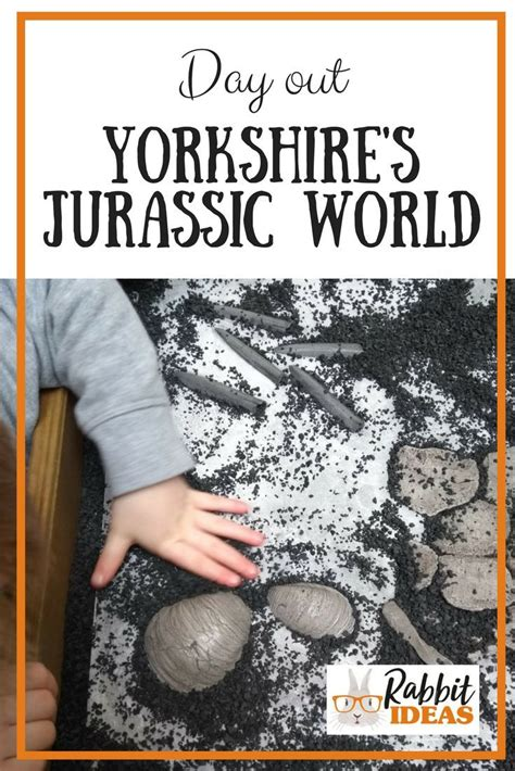 Day Out: Yorkshire's Jurassic World | Days out, Days out ...