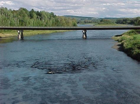 78 best images about aroostook county maine on pinterest