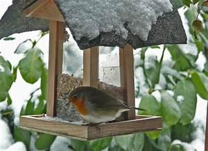 Futterhaus Für Vögel : v gel im winter gabys garten ~ Articles-book.com Haus und Dekorationen