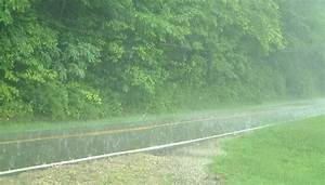 RAINFALL | rainfall