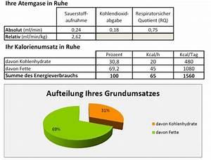 Kalorienbedarf Hund Berechnen : grundumsatz messen statt sch tzen bewegungsfelder ~ Themetempest.com Abrechnung