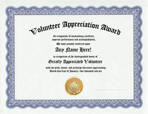 volunteer appreciation award certificate custom gift ebay With volunteer recognition certificate template